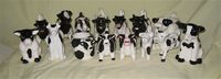 Herd of 15 black and white cow creamers