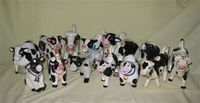 Herd of 14 black and white cow creamers
